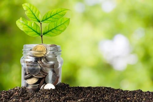 Savings money jar full of coins on soil-img-blog